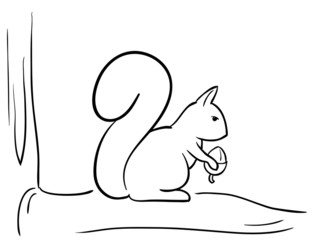 Vector squirrel on the branch and nut