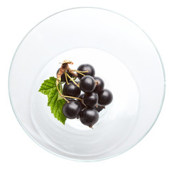 Blackcurrant in glass bowl