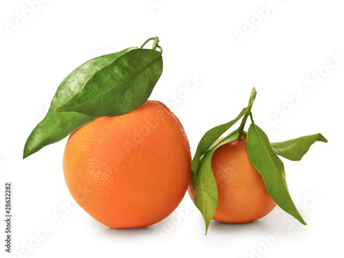 mandarin and orange
