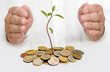 Hands protecting avocado seedling growing from pile of coins