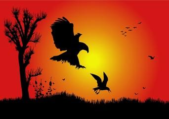ave cazada