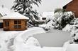 Jardin d'hiver 4
