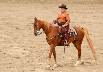 woaan riding an American Saddlebred in Western tack