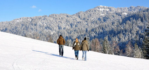 randonnée....alpes