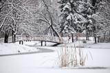 Winter scene from the frozen lake in city park Skopje, Macedonia poster
