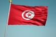 チュニジアの国旗