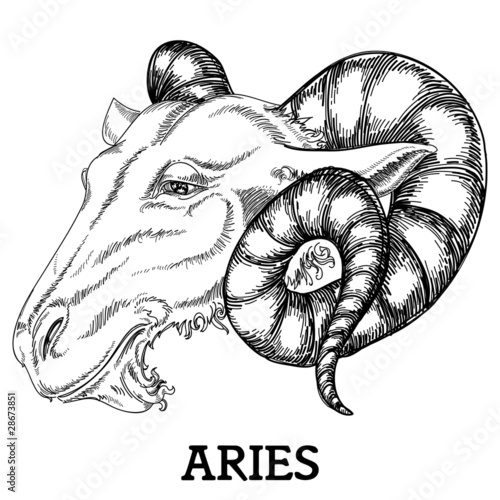 Aries zodiac sign © Danussa