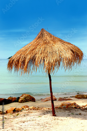 Lonely umbrella of reeds - 28682886