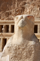 Temple of Hatshepsut Luxor, Egypt, hawk sculpture