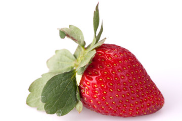 Fresh and Juicy Strawberry Picking from Farm
