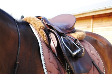 Horse saddle and tack