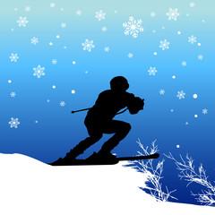 vector ski