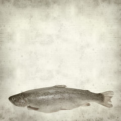 textured old paper background with fresh raw trout