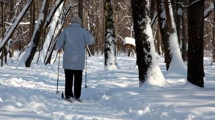 woman walks and skies in winter wood