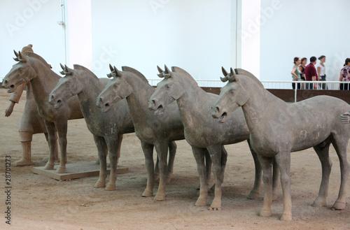 Foto op Plexiglas Xian cavalli: di terracotta