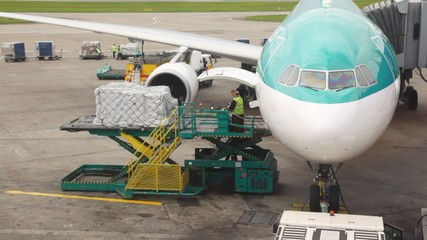 airplane standing at airstrip is loaded with goods by workers