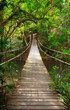 Leinwanddruck Bild - Bridge to the jungle,Khao Yai national park,Thailand