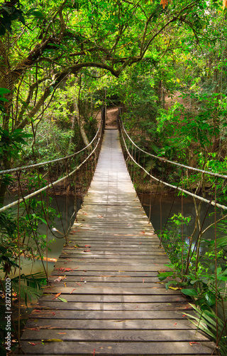 Leinwanddruck Bild Bridge to the jungle,Khao Yai national park,Thailand