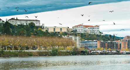 Mondego River and Coimbra in the background