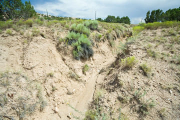 Erosion Created Gully Wash Arroyo in North Central New Mexico