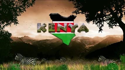 Migración en Kenia: cebras