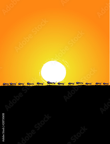 Background Illustration of marching ants