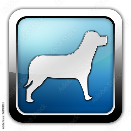 "Glossy Square Icon ""Dog / K9 / Canine"""
