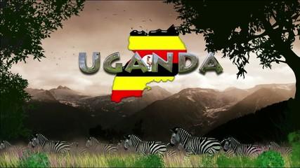 Manada de cebras: Uganda