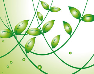 Light background with green leaves
