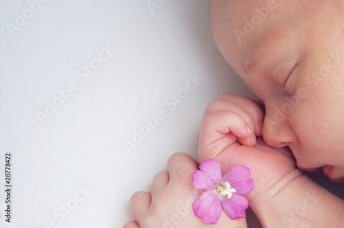 Cute Baby_Sleeping with flower