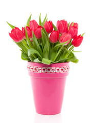 a bouquet of red colorful tulips in a pink vase with a red white