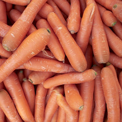 raw carrots closeup at the local market