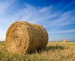 haystack on a field