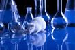 Leinwandbild Motiv White Rat in laboratory