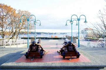 Cannon_Nanaimo_Commercial Bay