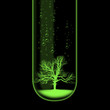 Tree in test tube illustration