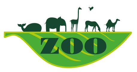zoo on sheet