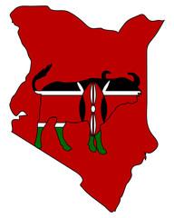 Kenia Büffel