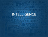 Intelligence Typography Poster poster