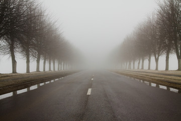 Road to a fog