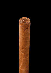 one cuban cigar