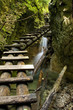 Canyon with mountain creek and wooden ladder