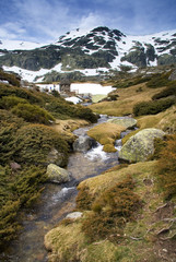 Creek in the Sierra de Guadarrama - Near Madrid