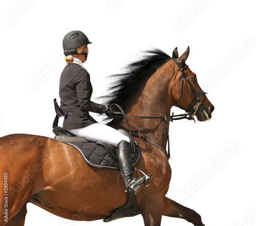 Show jumping rider isolated on white