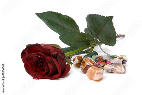 gemstones and rose