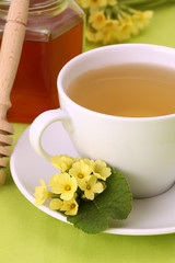 Healthy herbal tea with primroses and honey