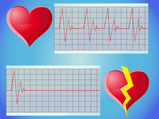heart rate pulse