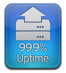Host Server Uptime Icon