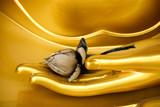 Fototapety Buddha hand