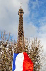The Eiffel Tower and the french flag, Paris, France